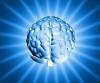 shiny_brain